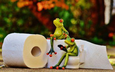 comment nettoyer vos toilettes ?